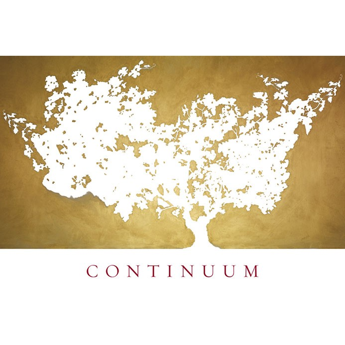 Continuum by Mondavi Sage Mountain Vineyard Napa 2014 (6L)