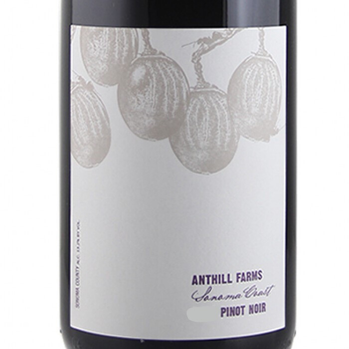 Anthill Farms Sonoma Coast Pinot Noir 2019 (750ML)